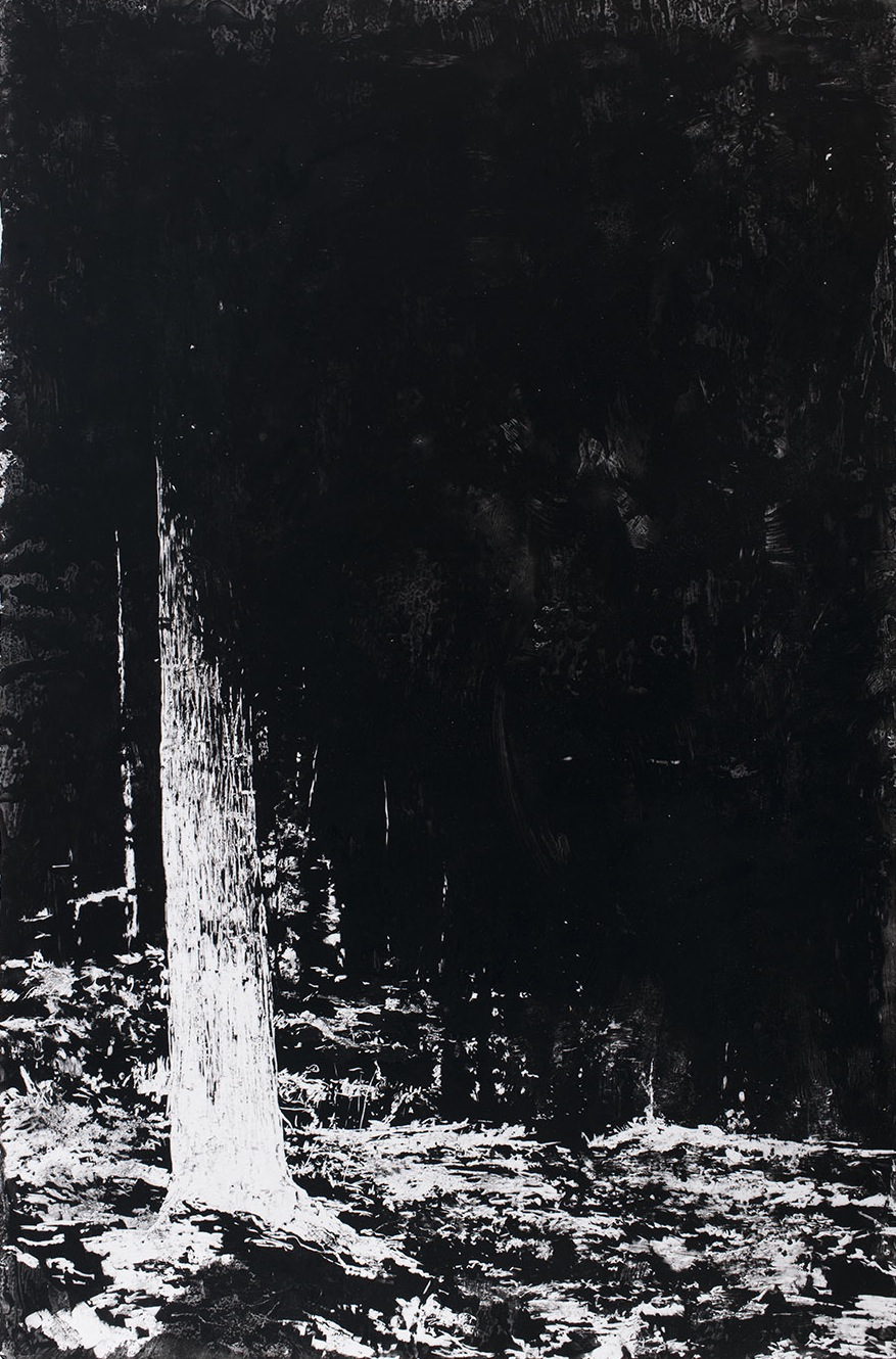 "A View From Here no.1, 2015, charcoal and microcrystalline wax on paper, 42"" x 60"""