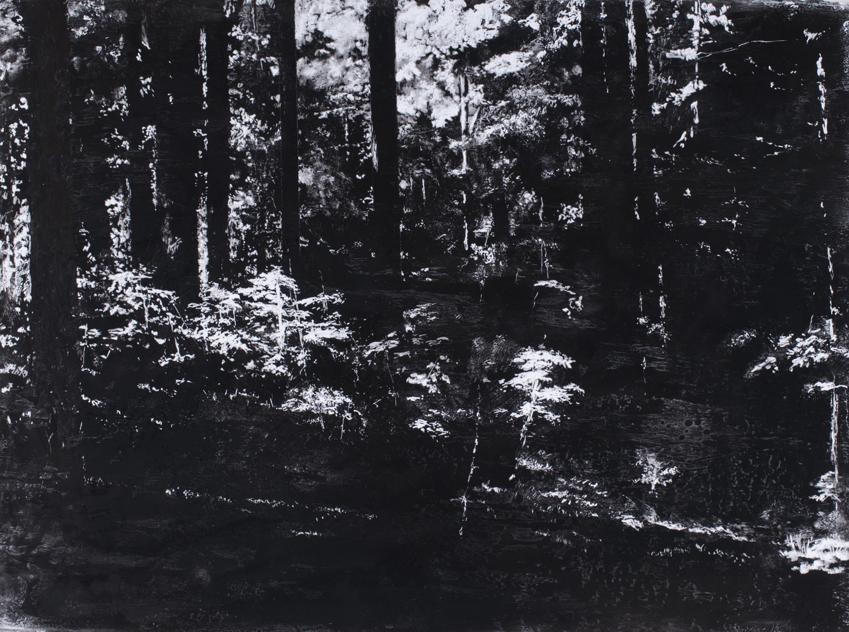 "First Light no. 1, 30"" x 40"", charcoal and microcrystalline wax on paper, 2013"