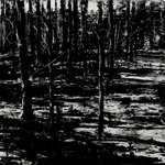 "Forest for the Trees, 24"" x 48"", charcoal and microcrystalline wax on paper, 2012"