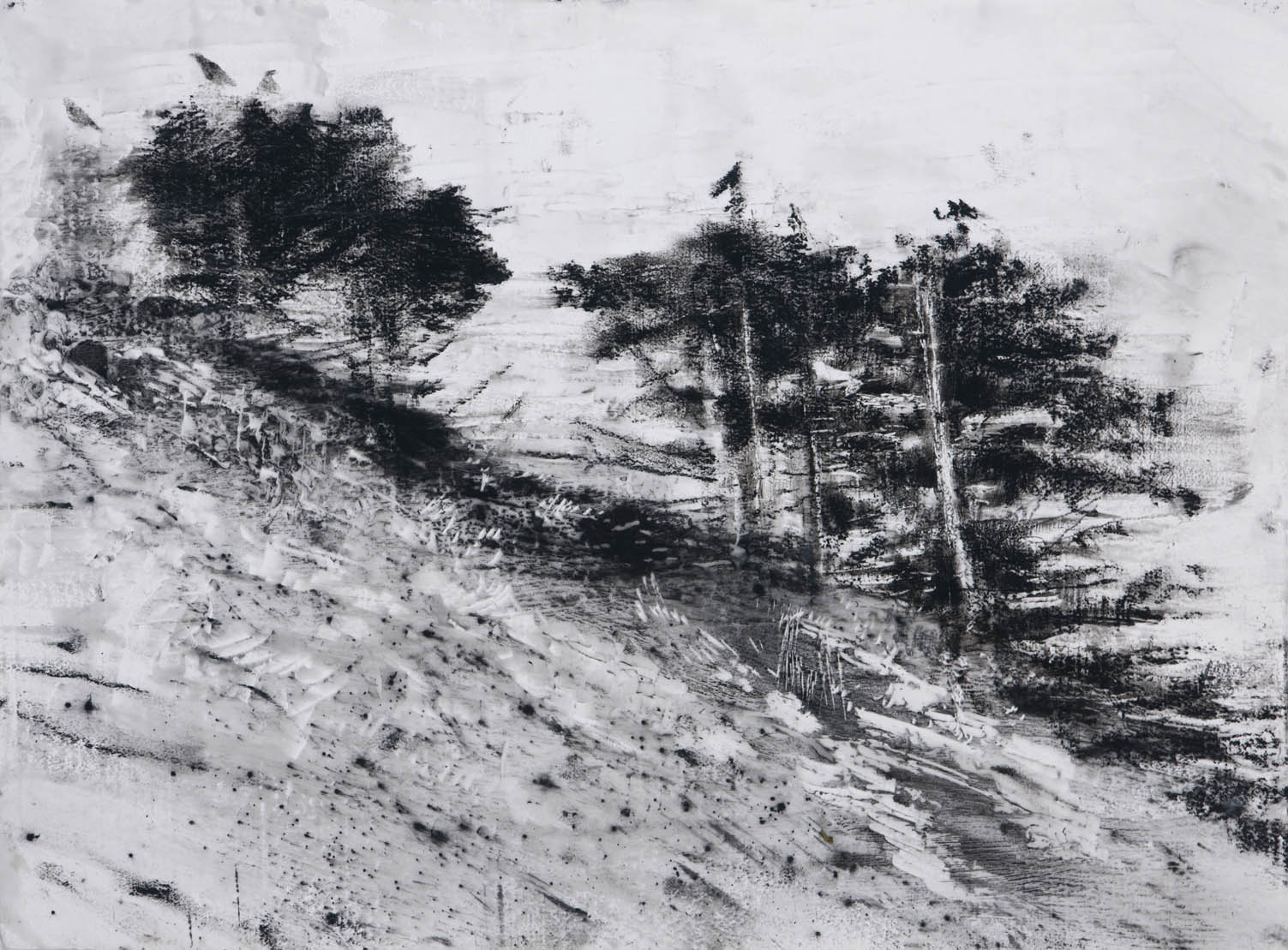 "Four Crows, 22"" x 30"", charcoal and microcrystalline wax on paper, 2010"