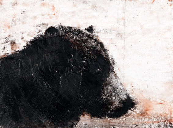 "Grizzly, 22"" x 30"", charcoal and microcrystalline wax on paper, 2010"