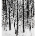 "Snow Trail no. 4, 30"" x 22"", charcoal and microcrystalline wax on paper, 2009"