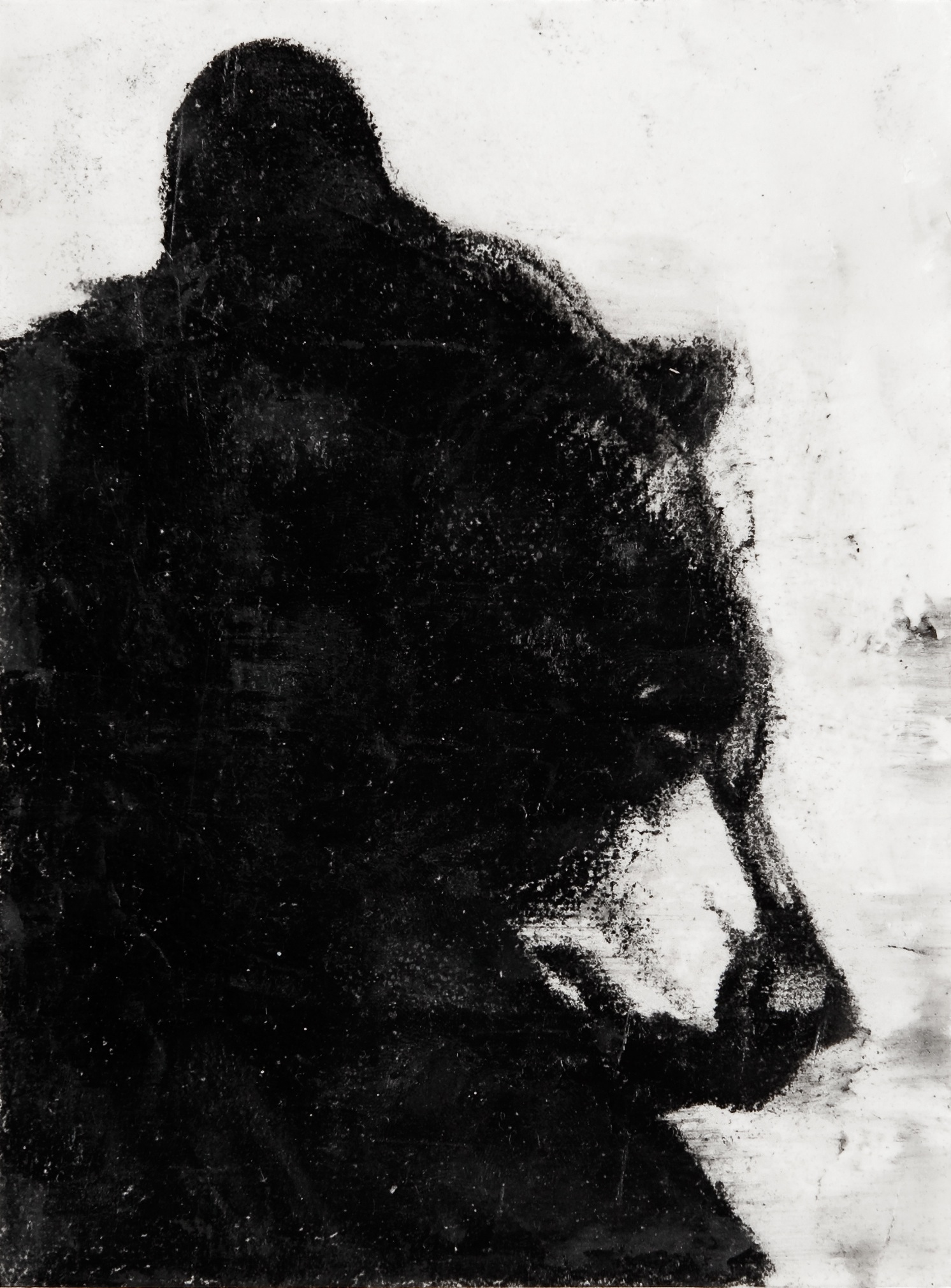 "Summer Bear, 12"" x 8"", charcoal and microcrystalline wax on paper, 2009"