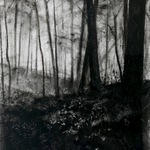 "Untitled, 48"" x 36"", charcoal and microcrystalline wax on paper, 2012"